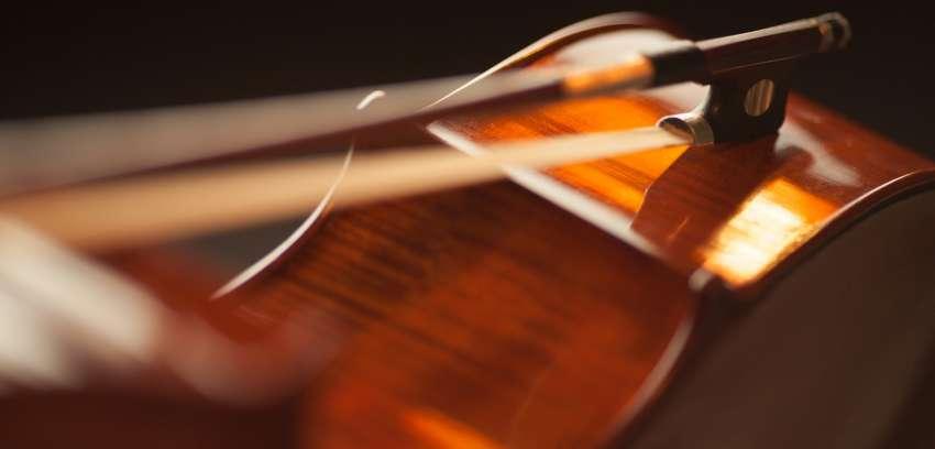 Seguros instrumentos musicais